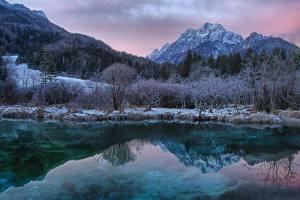 Zamrznjeni Zelenci - izvir Save Dolinjke